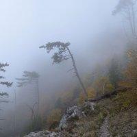 Осень :: Serge