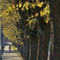 Осень...... :: Kliwo
