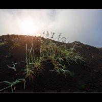 Kamchatka Dawn :: алексей афанасьев