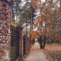 Осень :: Ксения Паращенко