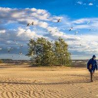 А годы как птицы летят :: Valeriy Piterskiy