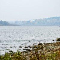 Река Ока. Осень :: Николай Варламов
