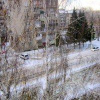Тогда выпал снег . :: Мила Бовкун