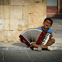 Я играю на гармошке у прохожих на виду)) :: Андрей Володин