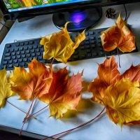 осени краски... :: Натали Акшинцева
