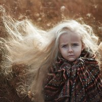 Похолодало... :: Наталия Полибина
