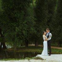 Свадебная прогулка :: Станислав Истомин