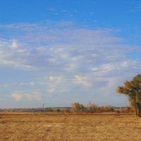 только небо, только ветер.. :: Леонид