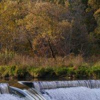 Метровый лосось как торпеда выныривает из воды чтобы преодолеть водопад :: Юрий Поляков