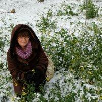 Для уральских цветов снег и асфальт - фигня!.. :: Натали Акшинцева