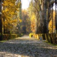 Осенний парк :: Alex Bush