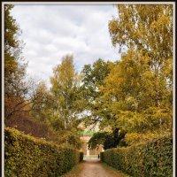 Осень в парке #3 :: Михаил Малец