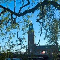 башня Ратуши, где чествуют Нобелевских лауреатов :: Елена