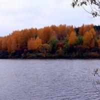 Осеннее... :: Валерия  Полещикова