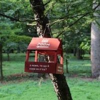 Птичья кормушка-3. :: Руслан Грицунь