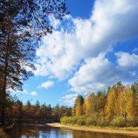 Облаков и мыслей невесомость... :: Лесо-Вед (Баранов)