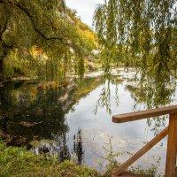 Кафе у озера :: Nyusha