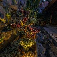 стемнело,сделал фото во дворе :: Александр