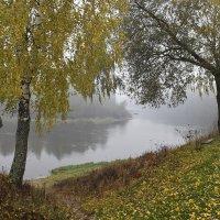Осеннее  золото. :: Валера39 Василевский.