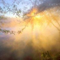 Рассветное воссоединение... :: Андрей Войцехов