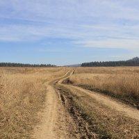 Русское поле! :: Андрей