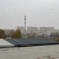 Осенний снегопад. :: Yuriy V