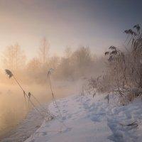 морозное утро на реке.. :: Геннадий ,