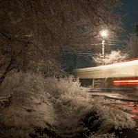 Зима :: Александр Пикалов