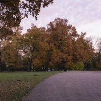В осеннем парке :: Aнна Зарубина