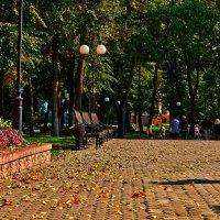 Мой любимый парк :: Александр Петрученко