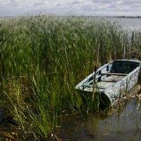Про лодку :: Дмитрий Близнюченко