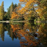 Осень любуется в зеркале :: Alexander Andronik