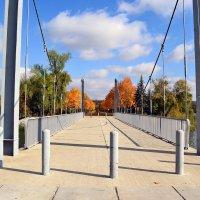 Мост в осень :: Nina Streapan