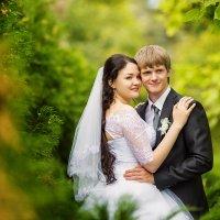 Свадебная прогулка :: Светлана Луковникова