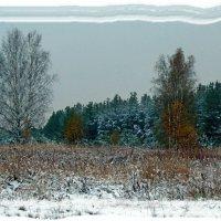 Осенняя зима. :: Николай Масляев