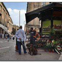 Площади и улицы Валетты. :: Leonid Korenfeld