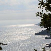 Море :: Вера Карпычева