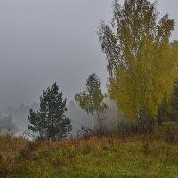 Осенняя  мгла. :: Валера39 Василевский.