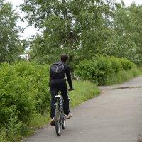 велосипедист :: Татьяна Бурнина