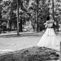 Как происходит съемка свадьбы(вид со стороны) :: IL'YA Degtyarev