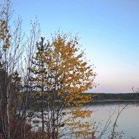 Осенний вечер :: Ольга