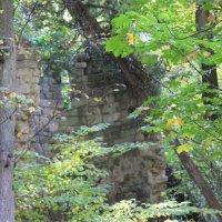 Руины старой крепости-4. :: Руслан Грицунь