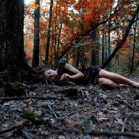 Dream of a tree :: Алина Миняйло