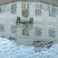 Отражение в зеркале воды. :: Владимир Гилясев