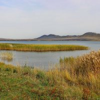 У озера. :: Наталья Юрова