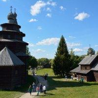 Прогулки по Витославлицам 12 :: Константин Жирнов