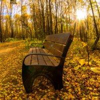 осень :: ruslic hodjaev