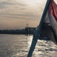 По Нилу на утлой лодочке :: Maxim Evmenenko