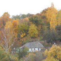 В городе тихом живёт одиноко домик с осенней мечтой... :: Татьяна