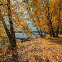 Воспоминания об осени :: vladimir